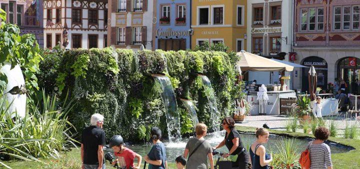 Vue d'une fontaine végétalisée dans le centre-ville de Mulhouse (©Thomas Itty)